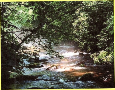 photo of mountain stream, the Little Pigeon River, from the front of the book